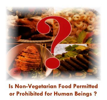 is-non-vegeterian-food-permited-or-prohibited-for-the-human-being